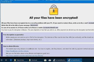 Dharma Ransomware Decryption Decryptor Solution